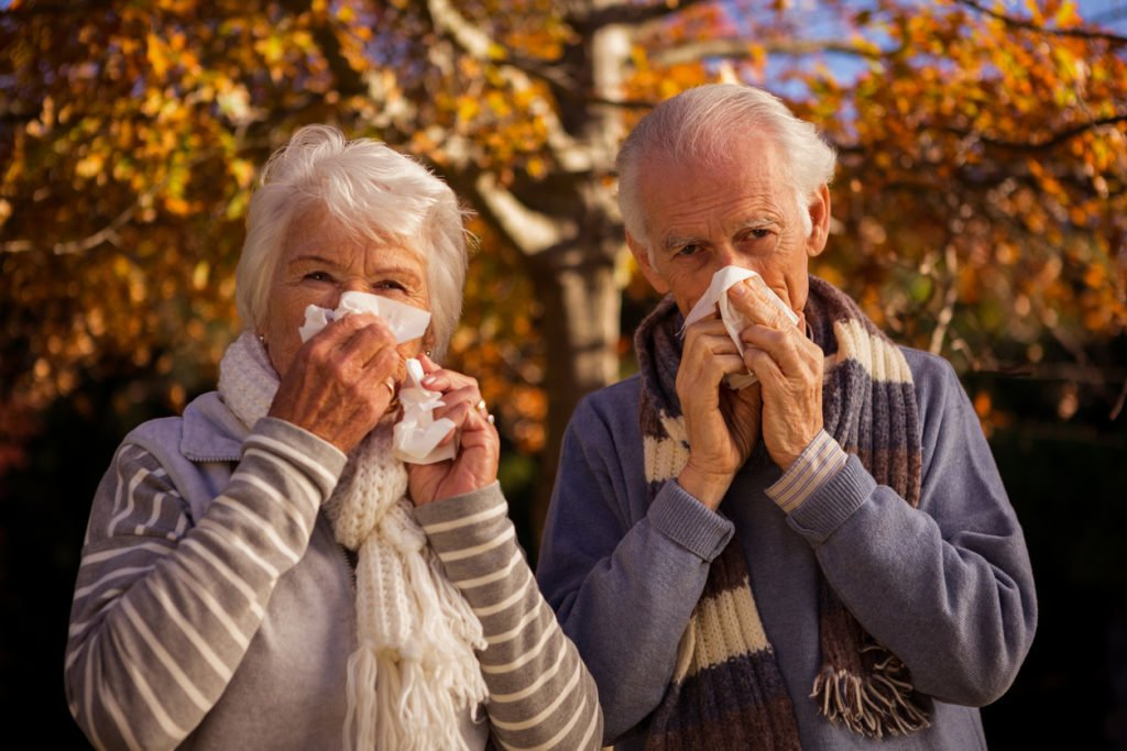 Seniors Allergies Allergy