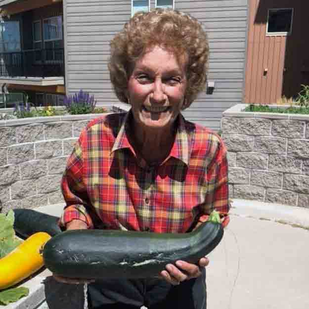 Fresh Vegetables for healthy seniors