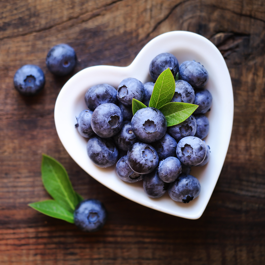 Fresh blueberries for seniors in retirement living assiste memory care